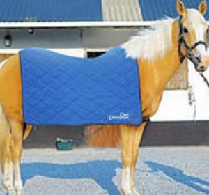 Silver Eagle Cooling Horse Sheet